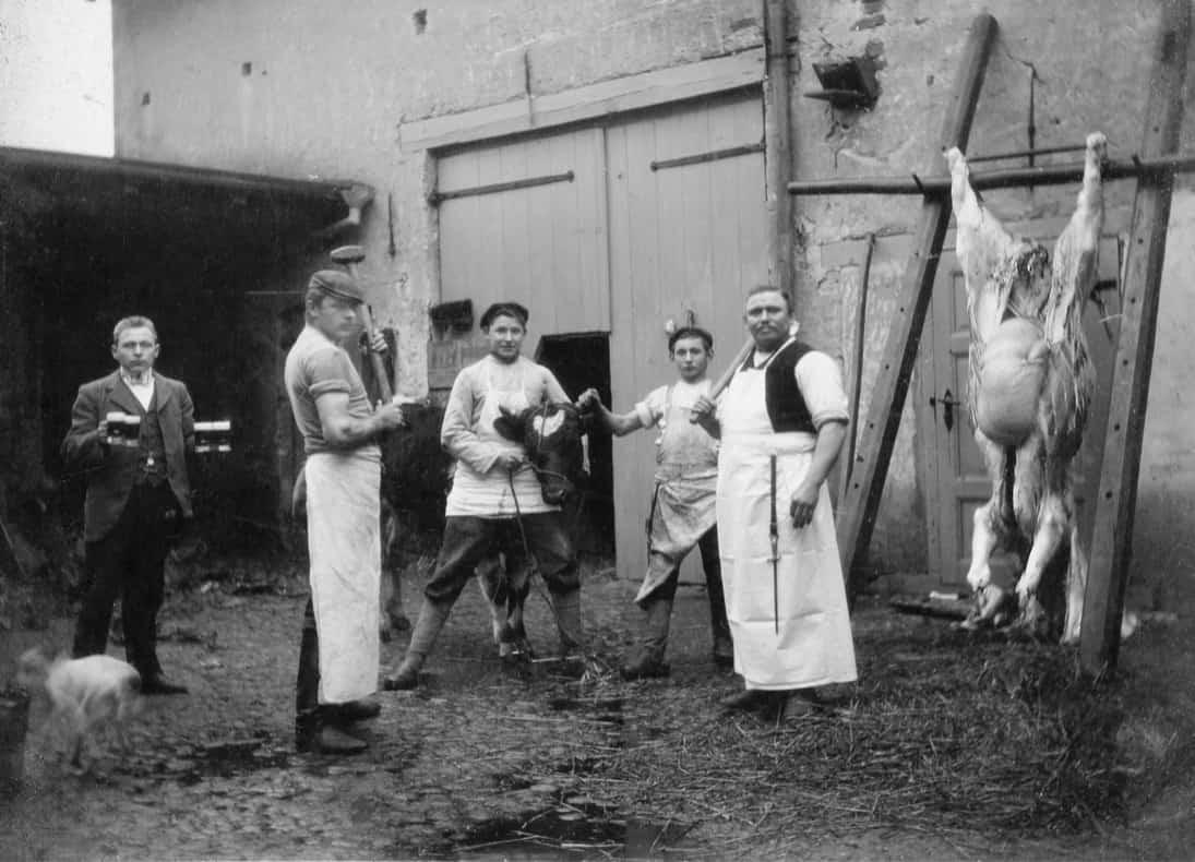 1910 Schlachtung bei Palms